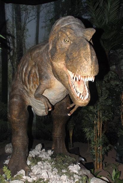 NATURAL HISTORY MUSEUM'S DINOSAURS COME TO ISTANBUL | The Jolly ...