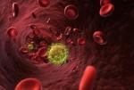 aids-virus-shutterstock_128569862-617x416