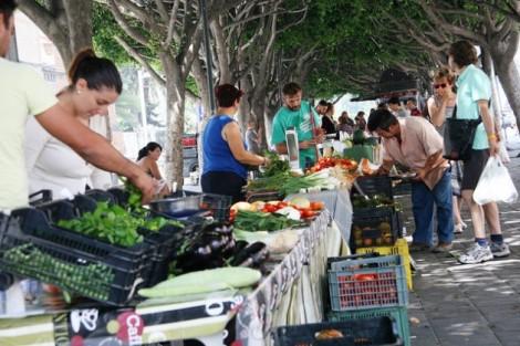 Spain-small-market-1