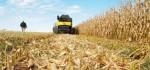 Corn-Stover-720x340