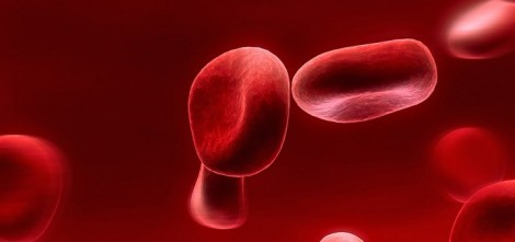 red-blood-cells-720x340