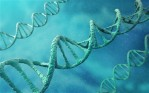dna-ancestry_2502064b
